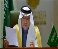 السفير السعودي بالقاهرة يقدم أوراق اعتماده بوزارة الخارجية