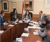 التضامن والهجرة تبحثان إشهار جمعية أهلية تضم العقول المصرية بالخارج
