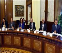 التعليم العالي: الحكومة وافقت على تغيير أسماء 3 كليات بجامعة سيناء