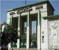 «معلومات الوزراء» تحسم الجدل حول نقل حديقة الحيوان لـ«العاصمة الإدارية»