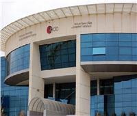 قطاع تكنولوجيا المعلومات المصري يواصل جذب الاستثمارات الأجنبية