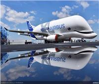 أول صورة لـ«الحوت الأبيض»..  حامل بضائع «إيرباص»