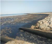«البيئة» و«علوم البحار» يفحصان بقعة زيت بخليج السويس