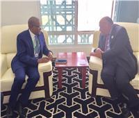 وزير الخارجية يؤكد على دعم مصر لدول منطقة الساحل الخمس