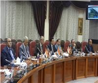 خبيرة بالاتحاد الأوروبي تشيد بجهود محافظة المنيا