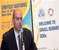 مصر تفوز برئاسة المجلس الدولي للمشروعات الصغيرة