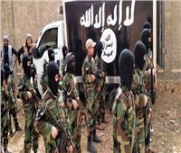 جماعة مرتبطة بالقاعدة تعلن مسؤوليتها عن هجوم على القوات الفرنسية في مالي