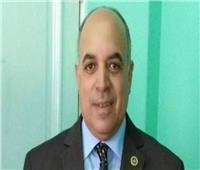 «المالية» تنفى تعيين رئيس جديد لمصلحة الجمارك خلفا لـ«جمال عبد العظيم»