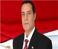 فيديو| الشهاوي: القوات البحرية المصرية السادسة على مستوى العالم