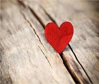 إبداعات القراء| حاربوا من أجل الحب «قصة قصيرة»