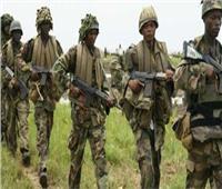 مقتل 10 مسلحين من «بوكو حرام» في النيجر