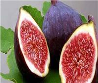 5 فوائد مذهلة لـ«التين».. يعالج العقم والسرطان