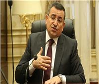 هيكل: أطالب بإجراءات رادعة ضد المتسببين في الإضرار بعلاقاتنا الخارجية