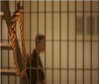 الإعدام والمؤبد لعصابة سرقة المواشى بالجيزة