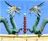 حكايات|  نينغشيا .. «تنين صيني» على الطريقة الإسلامية