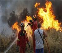 منظمة الأرصاد الجوية تحذر من أخطار حرائق الغابات في أوروبا