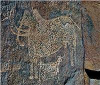 ننشر صورا توثق تواجد الإنسان القديم في البحر الأحمر قبل التاريخ