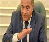وزيرا التموين والتضامن الاجتماعي يتابعان منظومة إضافة المواليد