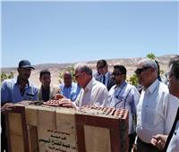 صور| «ابو ستيت» و «فودة» يتفقدان المشروعات الزراعية  بجنوب سيناء