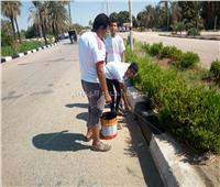 صور| انطلاق مبادرة لنظافة مدينة الطود في محافظة الأقصر