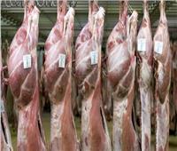 وزير التموين يعلن أسعار لحوم العيد المدعمة