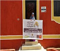 «الأورمان» و«بالم هيلز» يحتفلان بالانتهاء من تطوير30 منزل بالمنيا