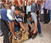 محافظ البحيرة تفتتح منفذ بيع اللحوم للعاملين بجامعة دمنهور