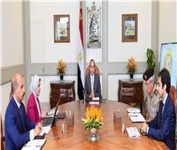 الرئاسة تُعلن تفاصيل اجتماع  «السيسي» بوزيرة الصحة