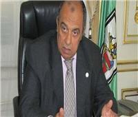 وزير الزراعة يُشكل لجنة تنفيذية لـ«مشروع غرب المنيا»