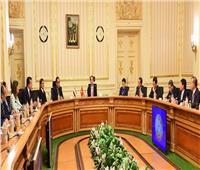«مدبولي»: دراسة كافة المقترحات لتعزيز التعاون الاقتصادي مع فيتنام