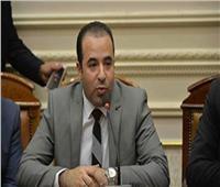 برلماني: الحبس 3 سنوات للمسئولين عن الصفحات الوهمية على «فيسبوك»