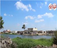 حكايات| من خير سطوحنا.. «نجع عون» اكتفاء ذاتي من الخضار لـ«القراميط»