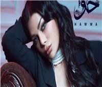 إسلام زكي يتعاون مع هيفاء وهبي في ألبوم «حوا»