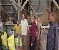 صور| مسئول بـ«الزراعة» يطمئن على تقاوي محاصيل الشتاء بكفر الشيخ