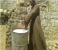 «وزارة الزراعة» تعالج 80 وحدة مصابة بالنمل الأبيض في أسوان