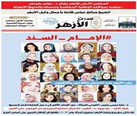 نساء مصر يحتفين بموقف الأزهر ضد التحرش