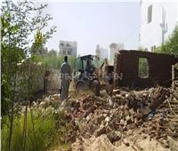 «الري»: إزالة 228 حالة تعد على نهر النيل