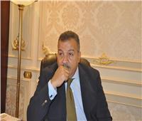«الصحة بالنواب»: جلسة طارئة لسماع بيان هالة زايد في أزمة «ديرب نجم»