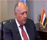 وزير الخارجية: مصر اقتربت من حصولها على مقعد دائم بمجلس الأمن