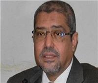 «غرفة القاهرة» تشكل مجالس إدارات 8 شعب تجارية.. نوفمبر المقبل