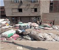 صور| القمامة تخنق سكان منطقة «أرض اللواء»