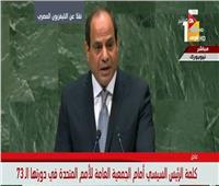 السيسي يطالب بتعزيز الشراكة بين الأمم المتحدة والاتحاد الإفريقي