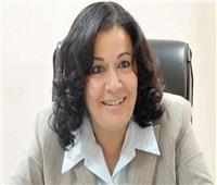 حوار| رئيس «الرعاية الاجتماعية»: زيادة مخصصات كبار السن من ميزانية «التضامن»