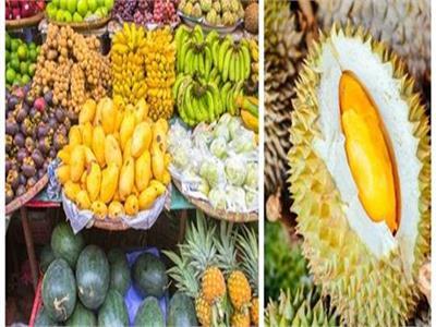 صور  12 فاكهة نادرة ورائعة لـ«تايلاند»