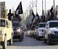 رحلة الجهاديين  «كل الطرق تؤدي إلى سوريا»