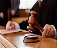 حجز الحكم فى استئناف المتهمين باحتكار الدواجن