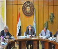 سعفان: ضرورة إنشاء قاعدة بيانات للعمالة المصرية بالخارج