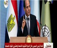 فيديو| السيسي: ليس أمامنا سوى العمل والصبر لبناء الدولة المصرية