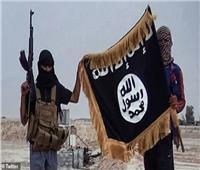 أبو بكر البغدادي يقرر إعدام 320 داعشيا