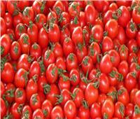 وزير الزراعة: الشركة المستوردة للطماطم المصابة مسئولة عن تعويض المزارعين